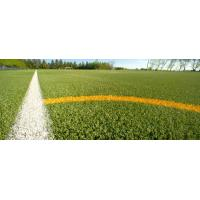 Wholesale Artificial turf recycling from china suppliers