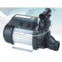 Wholesale IP55 Low Voltage Self Priming Water Pump Swimming Pool Water Pumps With USA Plug from china suppliers