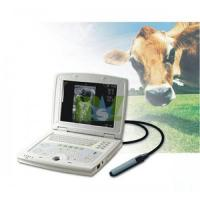 Wholesale Portable laptop ultrasound veterinary equipment-MSLVU08 from china suppliers