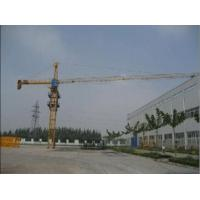 Wholesale Outernal Climbing Tower Crane (QTZ63 (TC5013)) max load 6t--minglongmachinery@gmail.com from china suppliers