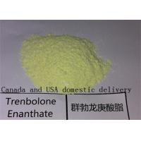 Wholesale Trenbolone Enanthate Raw Powders Anabolic Bulking Cycle Steroids for Muscle Growth from china suppliers