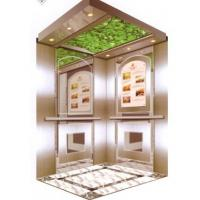 Wholesale Smaller Hoistway Shadow Elevators For Home Use / Homelift Elevators from china suppliers