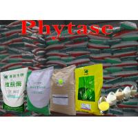 Wholesale Eco-Friendly Yellowish Powdered Phytase Animal Feed 50000u/g Szym-PHY50P from china suppliers