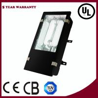 Wholesale Induction Flood Lamp from china suppliers
