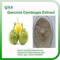 Quality Garcinia Combogia Extract HCA (Hydrogen Citric Acid) for sale