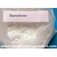 Wholesale Stanolone Powder Stanolone Hormone Anabolic Steroid Raw Powder from china suppliers