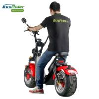Wholesale Motorized Lightweight Caiqiees Two Wheel Electric Scooter Citycoco 5h Charging Time from china suppliers