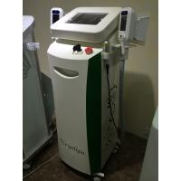 Wholesale Criolipoliza / Cryolipolysis Fat Reduction Machine from china suppliers