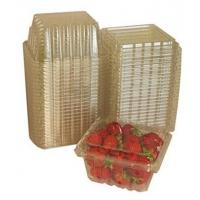 Quality Clear Rectangular Plastic Clamshell Containers Food Service Container With Flat Lid for sale
