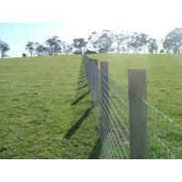 Wholesale Corrosion Resistance Electro Galvanizing / PVC Coating Grassland Fence For Woods Fowlery from china suppliers