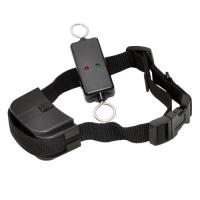 Wholesale Efficient Remote Pet Training Collar , Leash-Walking Dog Training Device from china suppliers