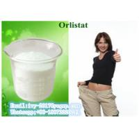 Wholesale Orlistat CAS 96829-58-2 Weight Loss Powder lipid lowering , losing weight steroids from china suppliers