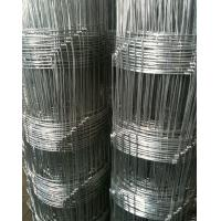 Wholesale Stainless Steel Field Wire Fence , Garden Border Edging / Galvanized Steel Wire from china suppliers