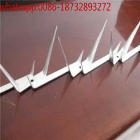 Wholesale 2017 hot sale Security wall spike/Shark tooth wall spikes/razor spikers/PVC coated & galvanized wall spikers from china suppliers