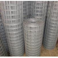 Wholesale 14 Gauge Galvanized Welded Wire Mesh 3 Feet by 50 Feet, Square Wire Mesh Fence from china suppliers