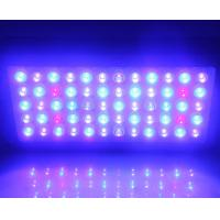 Wholesale Full Spectrum Led Aquarium Lights 60x3w Epistar Leds , Led Aquarium Lamp from china suppliers