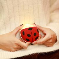 Wholesale NEW Design Beetle night light hand warmer GK-AG28 from china suppliers