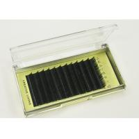 Buy cheap 1 Case Full Size JBCD Mink False Eyelashes Black Curl Individual False Eyelashes from wholesalers