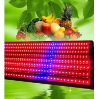 Wholesale 120 Degree LED Weed Growing Lights T8 18w , Grow Light Strips Bar Eco Friendly from china suppliers