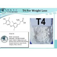 Wholesale T4 Fat Burning Steroids Powder Levothyroxine Sodium T4 For Weight Loss from china suppliers