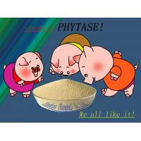 Wholesale Szym-PHY5C Phytase Animal Feed Additives Coated Granule Type 5,000u/g from china suppliers