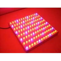 Wholesale 90w 270*60mm High Power LED Grow Lights For Promoting Plants Growth, Budding from china suppliers