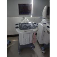Wholesale 8 Segment Adjustmen Trolley Ultrasound Scanner With 3.5MHz R60 Convex Probe from china suppliers