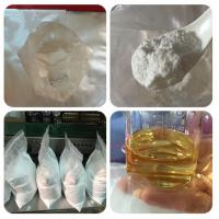 Wholesale 99% Assay Male Sex Hormone Powder , Test E / Testosterone Raw Powder CAS 315 37 7 from china suppliers