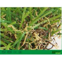 Wholesale Nature Garden Artificial Grass 35mm Uv Resistant with High Color Fastness from china suppliers