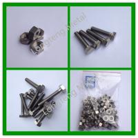 China titanium hex head bolts and nuts on sale