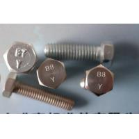 Wholesale 316 Stainless Steel Fasteners B8 / B8M SS Hex Head Bolt, M6 - M33 Bolts from china suppliers