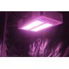 Buy cheap 3W Osram Leds Full Spectrum grow lights  bulb 210Watt, led plant light from wholesalers