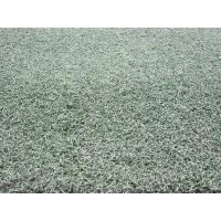 Wholesale EGE-20 Tennis Artificial Grass w/ Yarn Height 20mm ,Gauge 1/5 from china suppliers