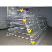 Quality Poultry Cage for Layer Chicken Farm for sale