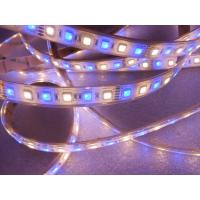 Wholesale High Lumen Epistar SMD5050 RGBW Low Voltage LED Strip With 3M Tape / 2700K - 7000K from china suppliers