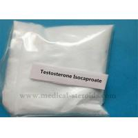 Wholesale Testosterone Isocaproate White Crystalline Powder 99.5% for Increasing Weight from china suppliers