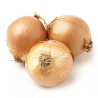 Buy cheap yellow onion in packing 10kg/20kg mesh bag from jining greenfarm from wholesalers