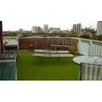 Wholesale Monofilament Artificial grass lawns synthetic for backyard /  Roof from china suppliers