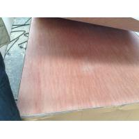 Wholesale packing plywood from china suppliers