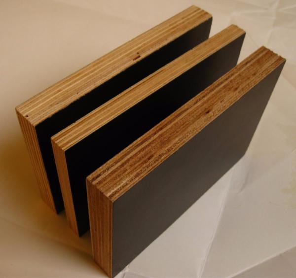 Construction building plywood melamine wbp glue film faced