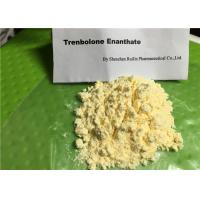 Wholesale Legal Raw Steroid Powders Trenbolone Enanthate / Tren E 10161-33-8 For Injection from china suppliers