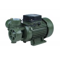 Wholesale 0.3HP Vortex Water Pump With Anti - Rust Function For Pipe Booster DB-125 from china suppliers