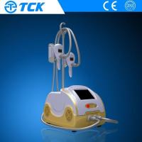 Wholesale Portable Cryolipolysis Slimming Machine Vacuum Skin Rejuvenation Machine with 2 handles from china suppliers