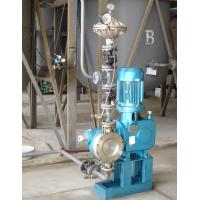 Wholesale 6000LPH Diaphragm Metering Pumm  , Chemical Diaphragm Pump Reciprocating from china suppliers