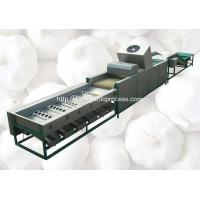 Wholesale Automatic Garlic Sorting Machine with Brusher Cleaning Function from china suppliers