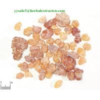 Wholesale Boswellia extract powder, Chinese manufacturer, Stable quality, Shaanxi Yongyuan Bio-Tech from china suppliers