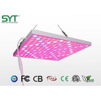 Wholesale Eco - Friendly Horticulture LED Lights Led Grow Lamp Energy Saving from china suppliers
