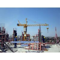 Wholesale Small Inner Climbing Tower Crane 0.7t Load 10m Height 440V/60Hz Specification from china suppliers
