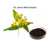 China Herbal Extraction Plant , St John'S Wort Standardized Extract 0.3% Hypericin For Eliminating Stress on sale
