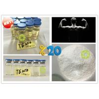 Wholesale Muscle building Supplements Testosterone Enanthate Powder Test E from china suppliers